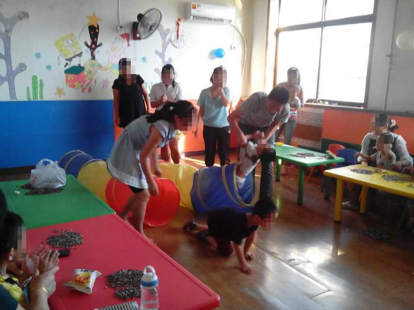 兒童孤獨癥語言開發機構